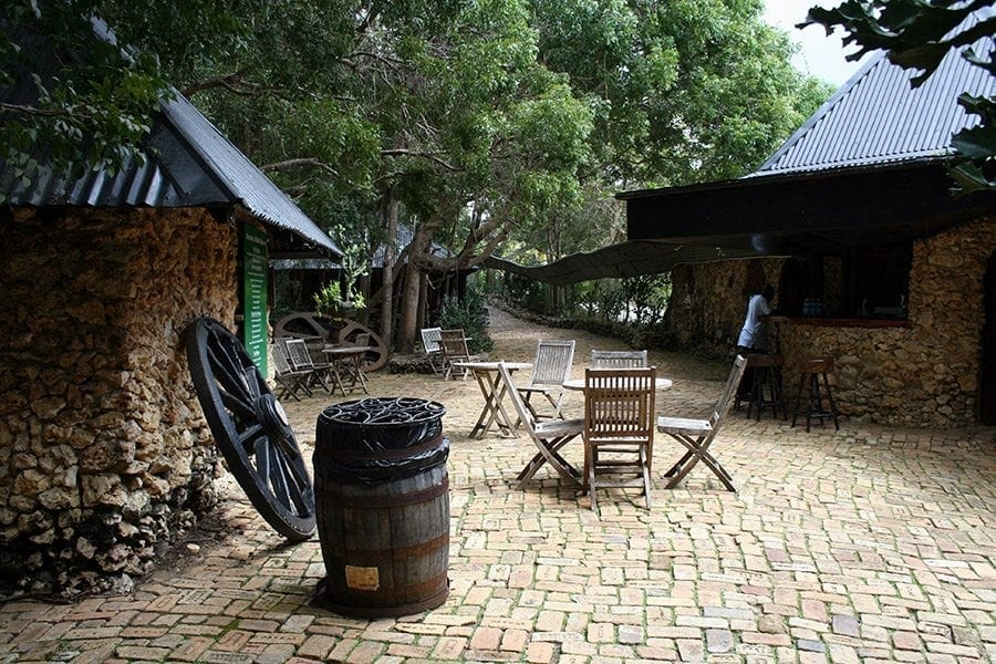 The Entrance to Wildlife Reserve is shaded with trees and the cobble stone pathways and the huts are where our friendly staff greet you!