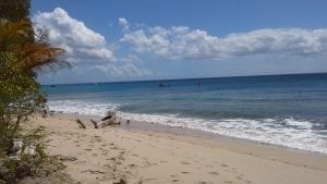 Miri-Joy Apartments Barbados 2 minutes walk from the beach.