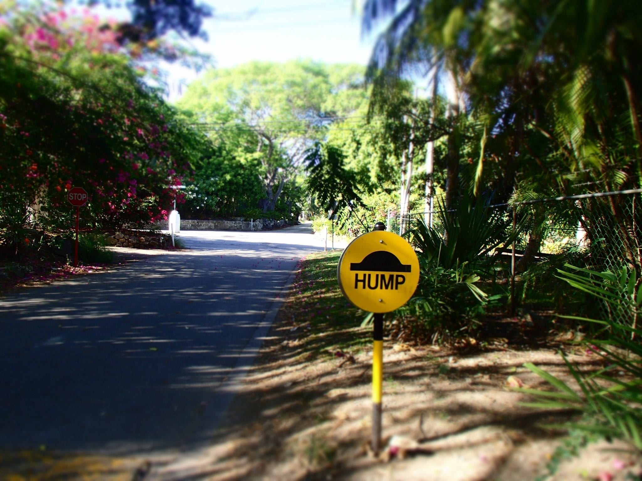 Barbados Experiences - Road Hump