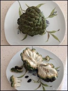 Barbados Sugar Apple