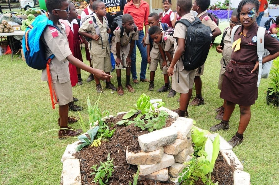 Agrofest was conceptualized by the Barbados Agricultural Society in 2005. Agrofest is an open air agricultural exhibition.