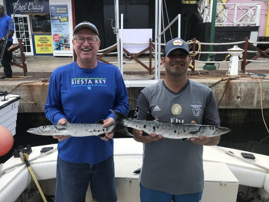 Barracudas Caught